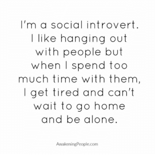 im-a-social-introvert-i-like-hanging-out-with-people-8538354